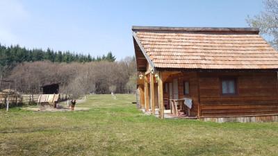 Vanzare Cabana, pe teren de 1600 mp, Maginit de Padure, in sat Gheorghieni !